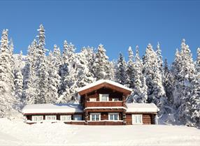 Vinter Gaustatoppen Booking